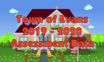 Online 2019 – 2020 Assessment Data