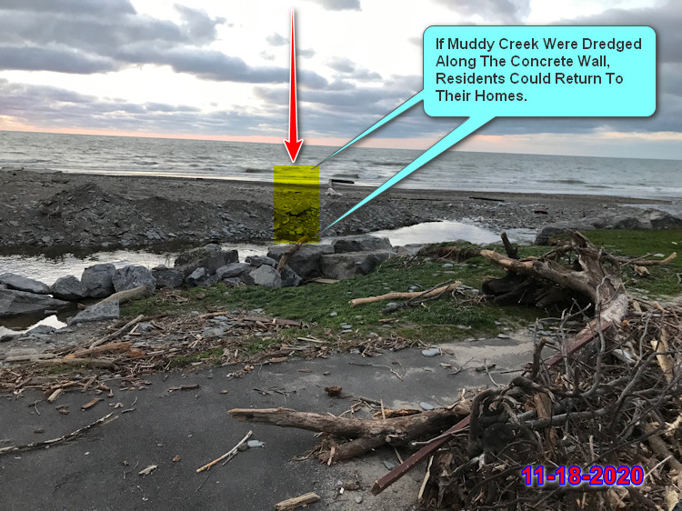 Muddy Creek 11-19-2020