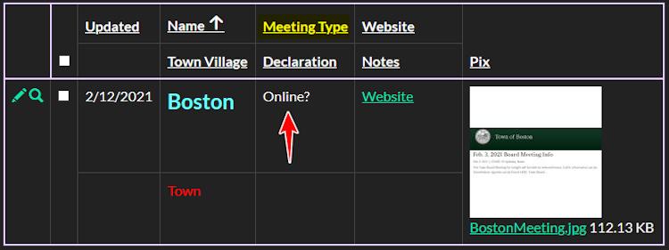 Meeting Type Help